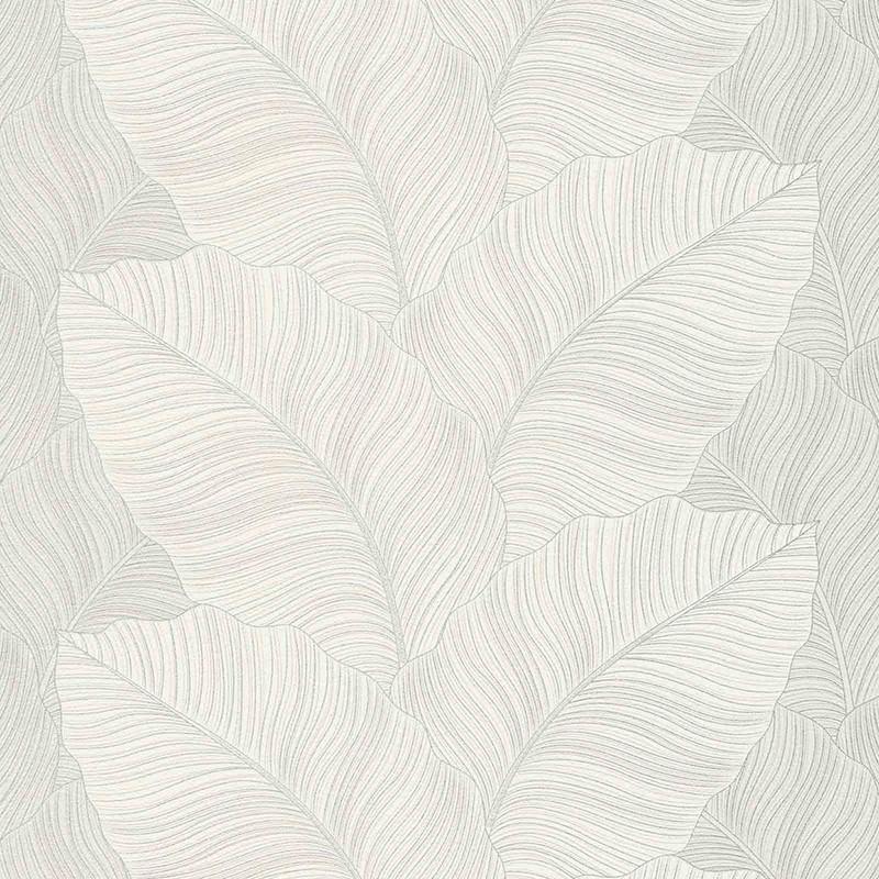 Papel pintado Colowall Borneo 245-3355