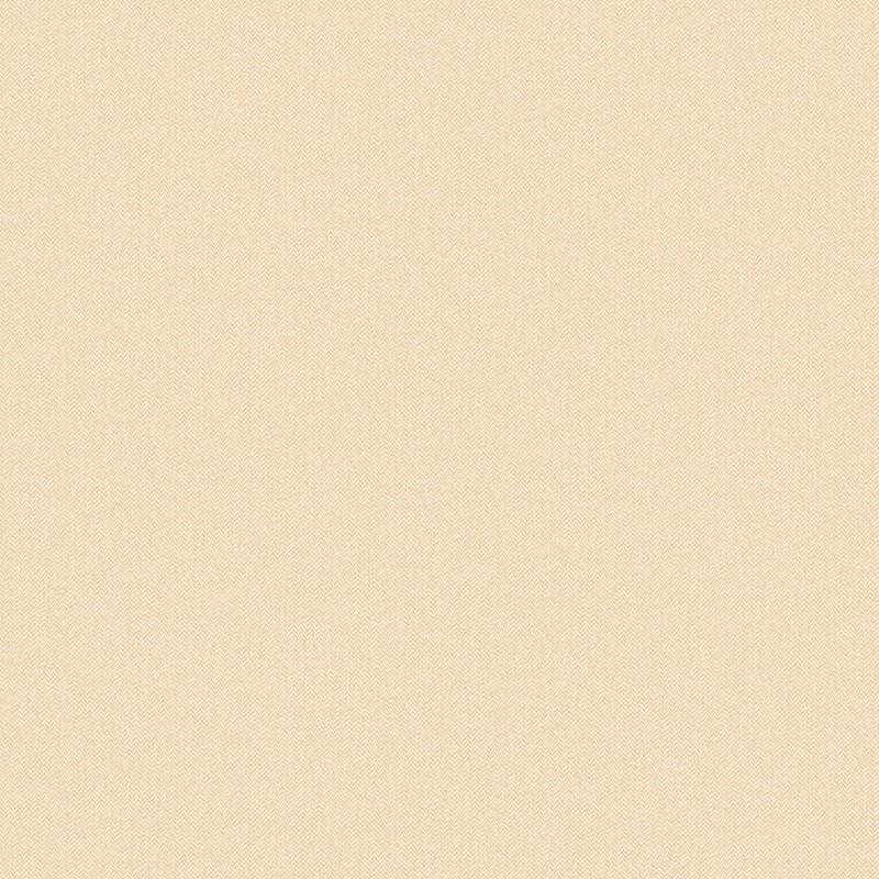 Papel pintado Caselio Chevron Uni  CVR102221120