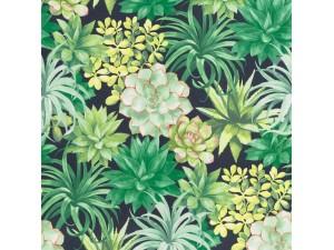 Papel pintado Casadeco Botanica Echeveria BOTA85917396