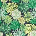 Botanica Echeveria BOTA 8591 73 96 Papel pintado