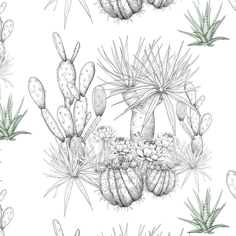 Papel Pintado AtelierWall Collection 2020 Lanzarote Desert A19 006