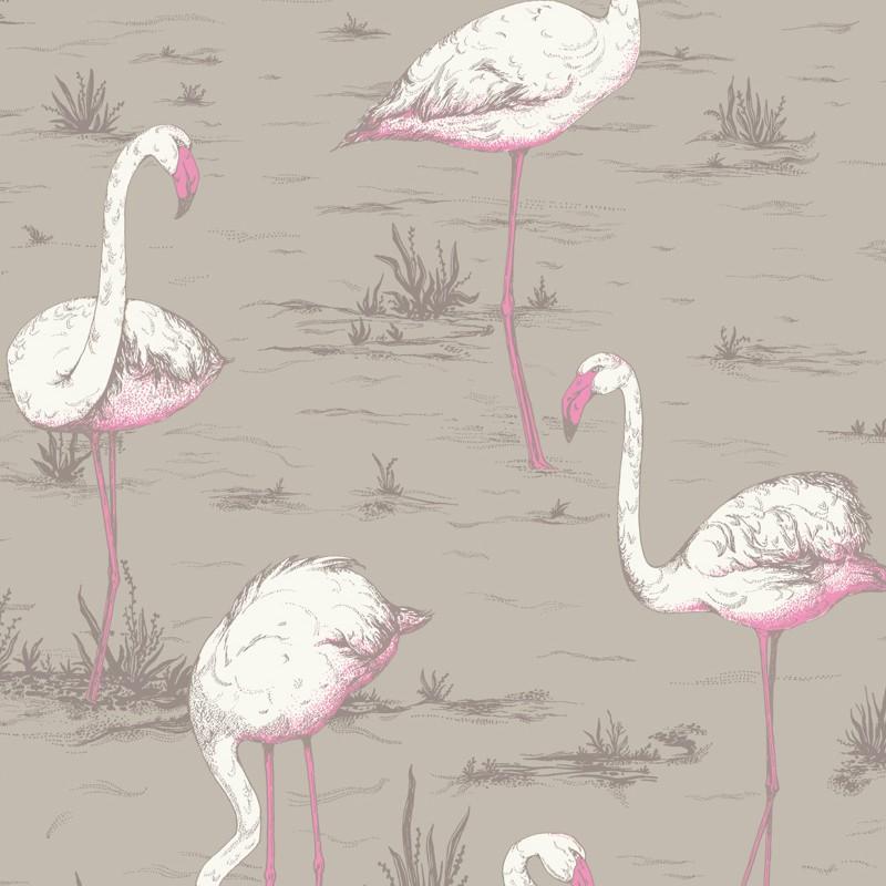 Papel pintado Cole & Son The Contemporary Selection Flamingos 66-6042