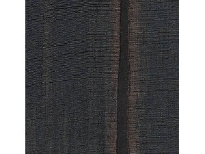 Papeles Pintados Elitis Nomades VP 895 81