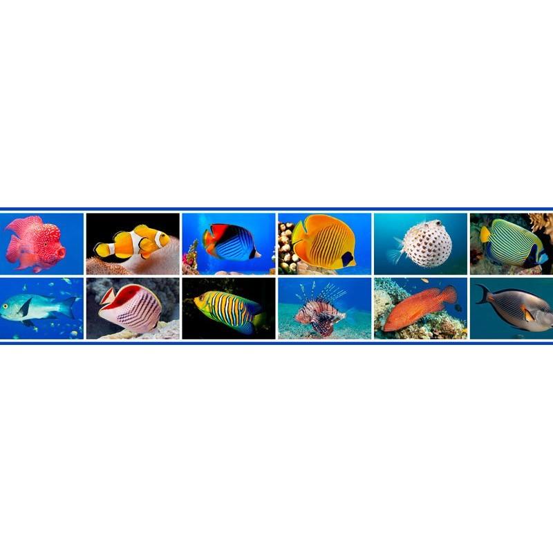 Cenefas Decorativas de Fotomurales DC CEJ013