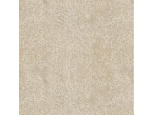 Papel Pintado Carlucci di Chivasso Ghost Walls CA8219-071