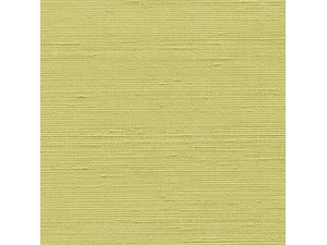 Papel pintado Élitis Kandy VP 750 15
