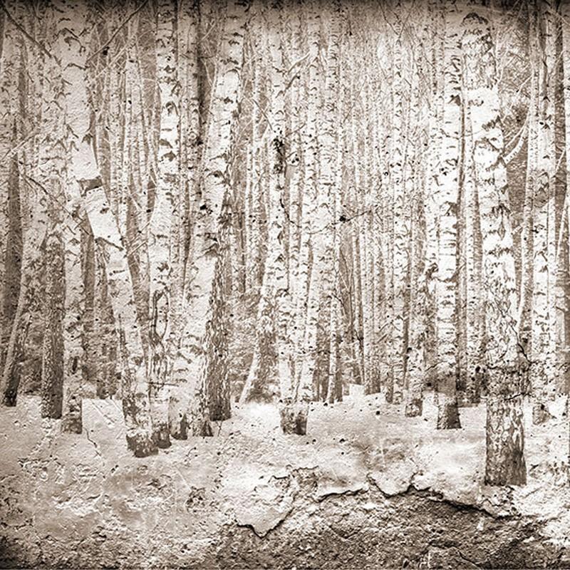 Mural Coordonné Random Papers Broken Forest 6500202N A