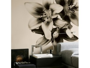 Mural Wall&Deco Contemporary Wallpapers 2010 WDNP0902 A