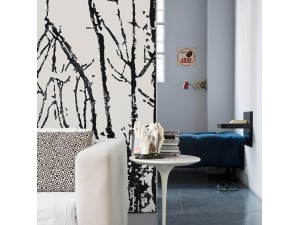 Mural Wall&Deco Contemporary Wallpapers 2011 Black Forest BBBF1101 A