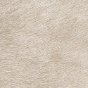 Papel pintado Indomptée VP 625 40