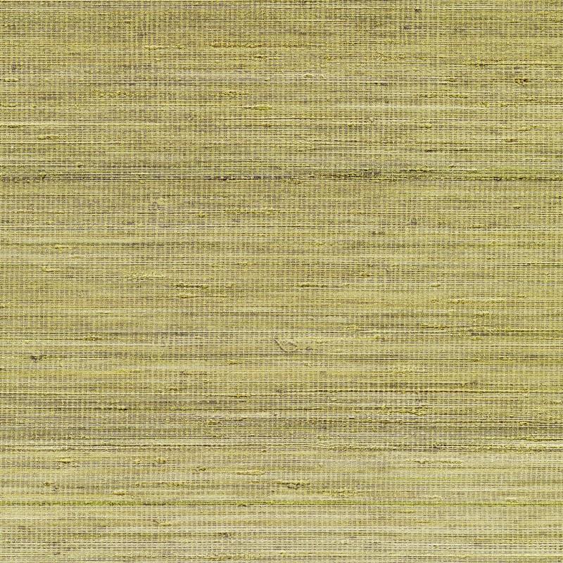 Papel pintado Elitis Panama Musa VP710-11