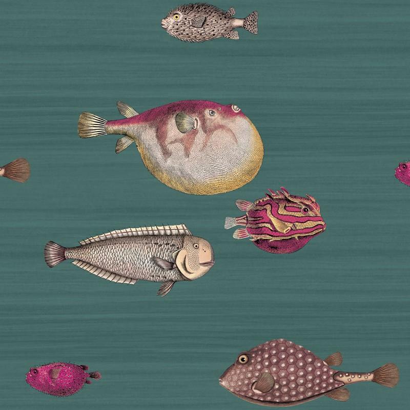 Papel pintado Cole & Son Fornasetti Acquario 114-12024