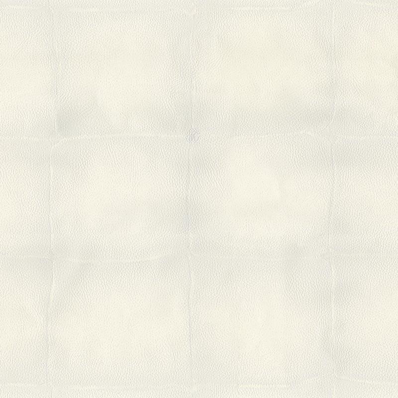 Papel pintado Roberto Cavalli nº 6 RC17029