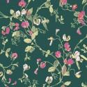 115/11033 Botanical Botanica Sweet Pea Papel pintado