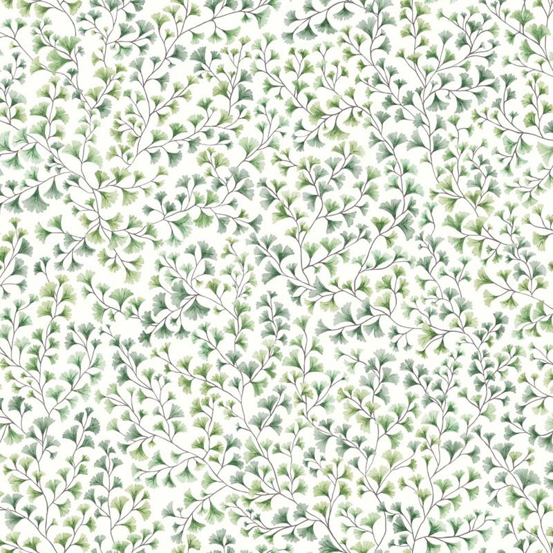 Papel pintado Cole & Son Botanical Botanica Maidenhair 115-6018