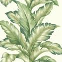 Maui Maui Big Leaf TP81204 Wallquest Papel pintado