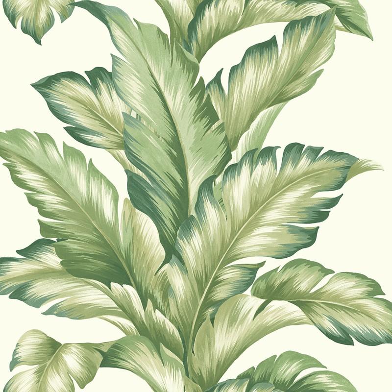 Papel pintado Wallquest Maui Maui Big Leaf TP81204