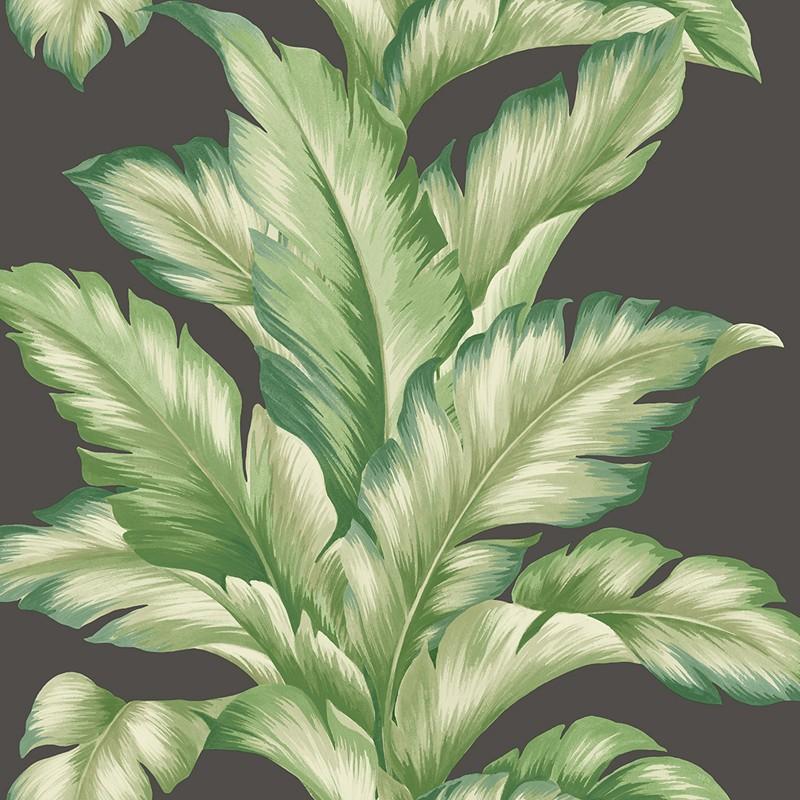 Papel pintado Wallquest Maui Maui Big Leaf TP81200