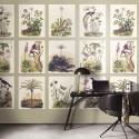 Encyclopedia ENCY 8334 14 66 Herbarium Mural Casadeco