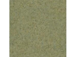 Papel pintado Casadeco Encyclopedia Reptilis ENCY82687457