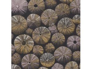 Papel pintado Casadeco Encyclopedia II Achinos ENCC84532520